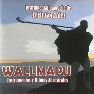 CECIL GONZALEZ – WALLMAPU: INSTRUMENTOS Y RITMOS ANCESTRALES